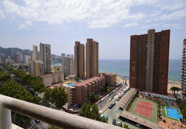 Appartement in Benidorm - LOS CABALLOS (1 BEDROOM APARTMENT)
