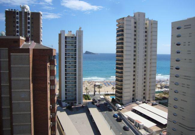 Appartement in Benidorm - PRINCIPADO MEDITERRANEO (1 SCHLAAFKAMMER)