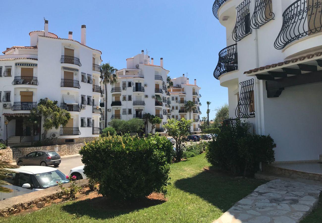 Appartement in Denia - Bonito Apartamento en planta baja con 1 dormitorio 3313
