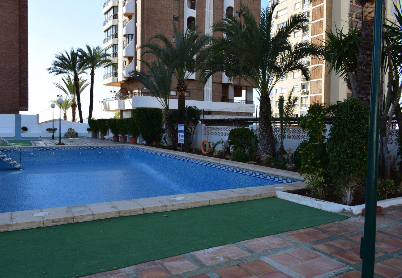 Appartement in Benidorm - LOS GEMELOS (2 BEDROOM)