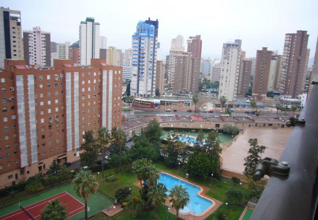 Appartement à Benidorm - GEMELOS 12 (1 DORMITORIO)-1-dormitorios