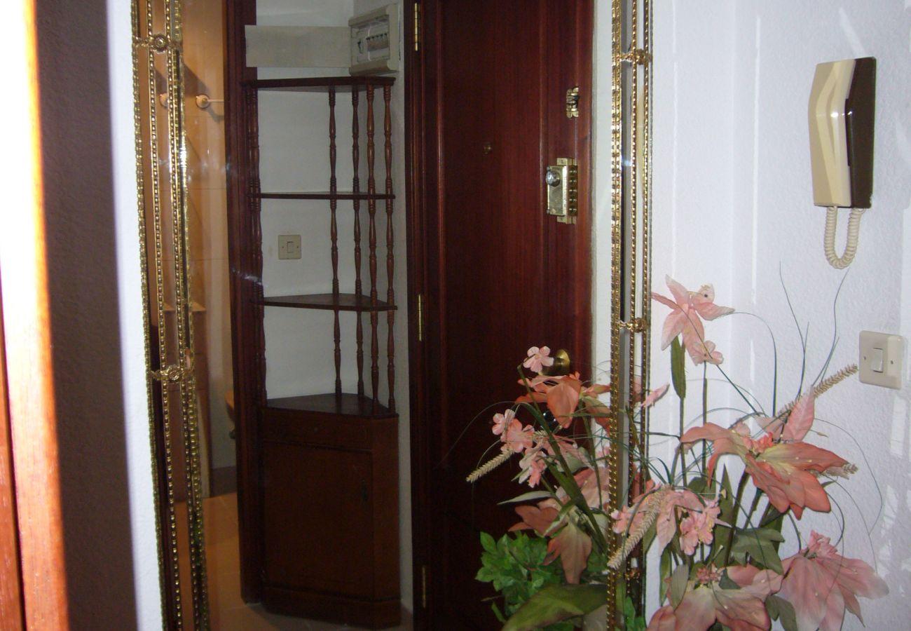 Appartement à Benidorm - GEMELOS 12 (1 CHAMBRE)