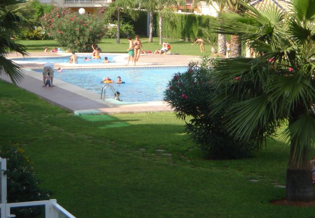 Apartment in Denia - Apartment in Denia 400 m from the Marines Beach