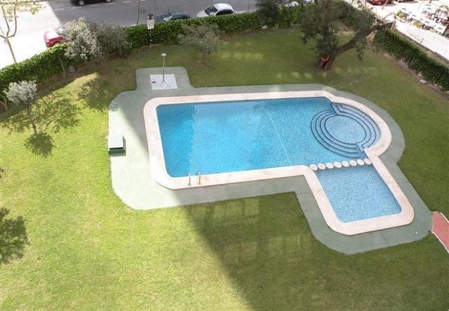 Apartment in Benidorm - ISLANDIA (1 DORMITORIO))-1-dormitorios