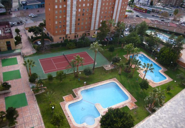 Apartment in Benidorm - GEMELOS 12 (1 BEDROOM)