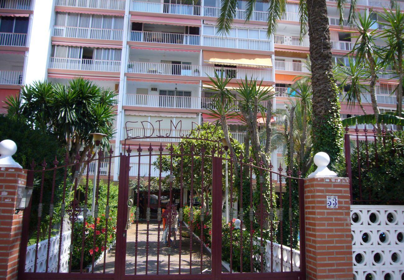 Apartment in Benidorm - EDIMAR (3 BEDROOMS) BENIDORM