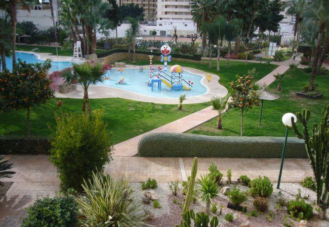 Apartment in Benidorm - GEMELOS 22 (1 DORMITORIO)-1-Dormitorios