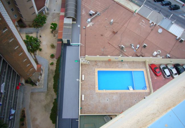 Apartment in Benidorm - ZEUS (1 BEDROOM)