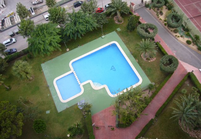 Apartment in Benidorm - GEMELOS 10 (1 BEDROOM)